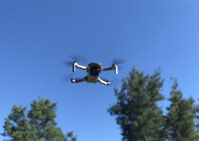 Drohne Dji Mavic Mini MKLHOVER.DE